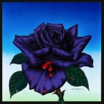 Thin Lizzy Blackrose