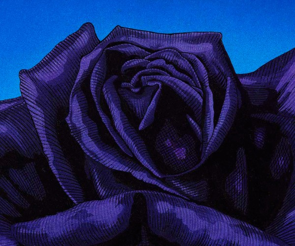 BLACK ROSE detail 2