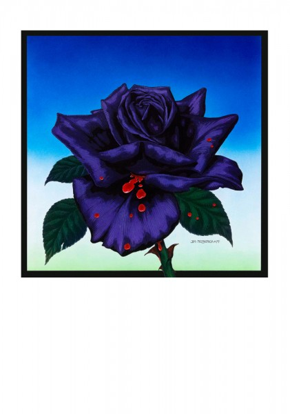 TL.06.BLACK ROSE.1979.A2