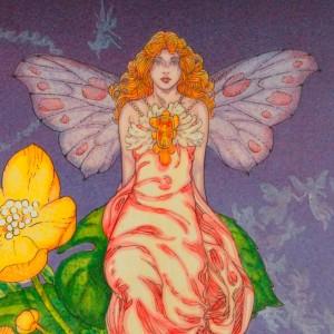 Fairy's
